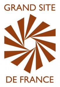 logo RGSF